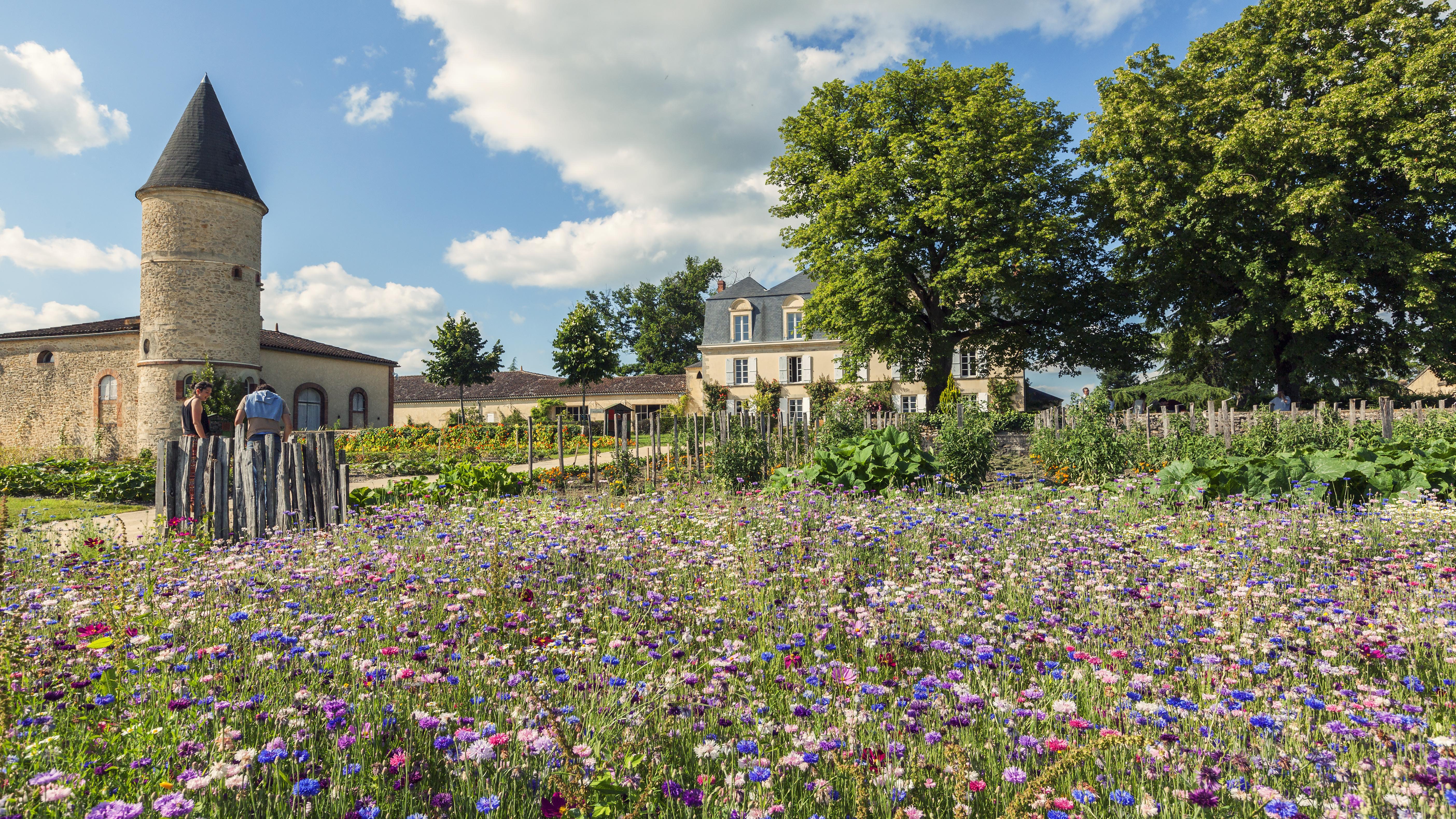 Jardin bio du château Guiraud